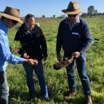 Assessing soil compaction
