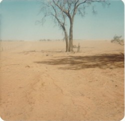 NSWSKN_soils and drought